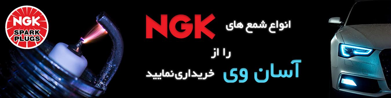 catalog/banner/NGK2.png